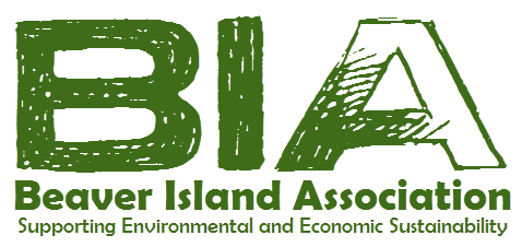 BIA Board Meeting @ Beaver Island Community School